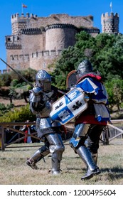 Medieval combat, with a castle in the background