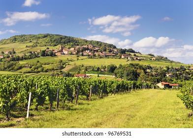 Medieval golden village called Theiz? (Beaujolais / France)