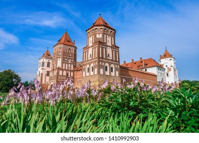 Medieval Mir Castle Complex (Belarus) surrounded by purple flowers on a sunny day at summer
