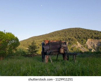 medieval and rustic wooden wagon in the middle of nature