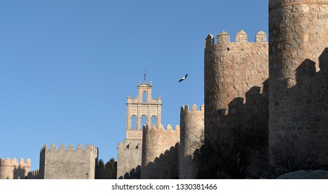 Medieval Spanish walls and stork flying