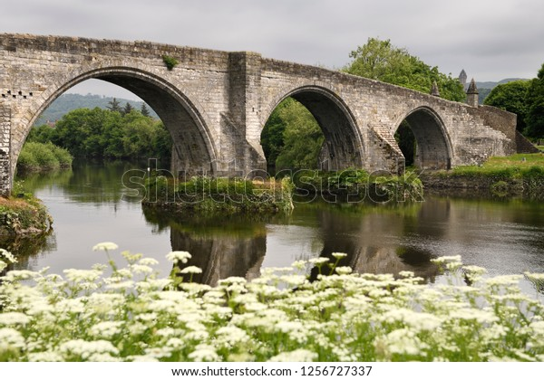 Medieval stone arches of Old Stirling Bridge over the River Forth with Queen Annes Lace on riverbank and Wallace Monument Stirling Scotland UK
