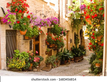 Medieval street of Spello decorated with flowers. Festival of flowers. Italy