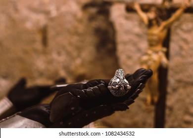 Medieval Templar soldier praying