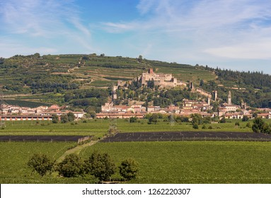 The medieval village of Soave near Verona with the castle, the green hills and the famous vine cultivation