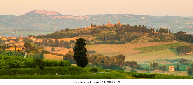 The medievil town of Montepulciano can be seen in the background of the idyllic Tuscan countryside.