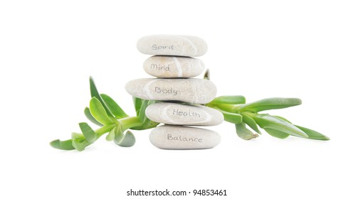 Meditation Rocks with Health Words Written in Pencil Succulent Plant isolated on white background