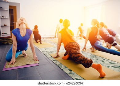 Meditation teacher shows exercises from yoga and stretching for a group of girls and guys. Concept of team health and coaching of the splash.