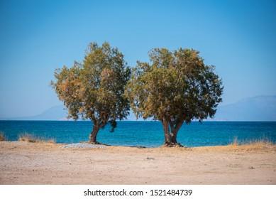 Mediterranean beach in Greece at Agistri Island