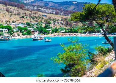 Mediterranean flowers at the sea