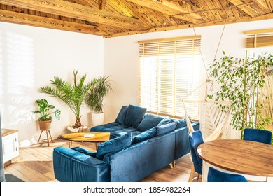 Mediterranean interior design of beautiful house, living room with big sofa and home green plants. Cozy indoor place with wooden elements and bamboo blinds transmitting the rays of the sun.