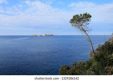 Mediterranean landscape near Dubrovnik , Croatia