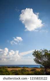Mediterranean landscape with vegetation, a blue sky with clouds and the sea in the background