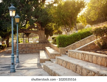 Mediterranean public garden square with old trees and soft evening light, Cyprus.