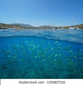 Mediterranean sea coastline with moored boats in summer and fish school underwater, split view half above and below water surface, Spain, Cadaques, Portlligat, Costa Brava, Catalonia
