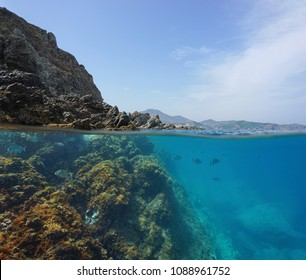 Mediterranean sea rocky shore with fish underwater, split view above and below water surface, Marine reserve of Cerbere Banyuls, Pyrenees Orientales, France