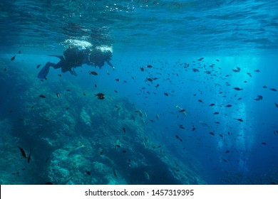 Mediterranean sea scuba diving, couple of divers on water surface look at fish shoal underwater, Costa Brava, Spain