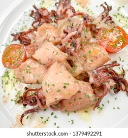 Mediterranean squid in its sauce with onion and natural tomato