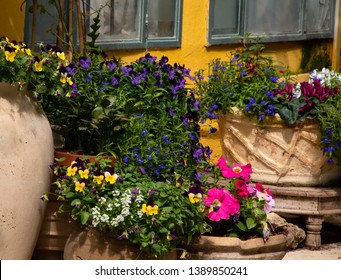 Mediterranean style garden patio backyard with colorful flowers in ceramic pots and old yellow painted stucco house wall at background in sunny summer day. Relaxing south countryside vacation concept.