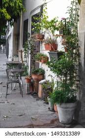 Mediterranean terrace with plants in pots, Cyprus