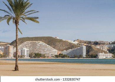 Mediterranean view with palm tree in Cullera, Valencia, Spain
