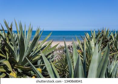 Mediterranean wild beach in Denia, Valencia, Spain