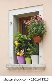 Mediterranean Window with Flower Pots
