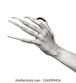 Medium format film photography shot. Black and white portrait of a man's hand with an extreme long nails against white background.