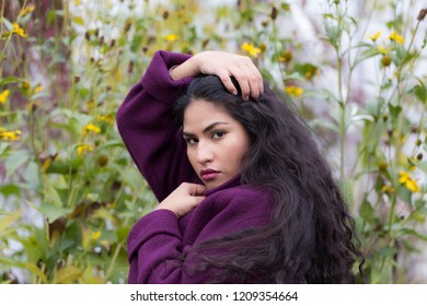 Medium horizontal portrait of sultry hispanic young woman with hands in long flowing curly dark hair wearing purple sweater in front of soft focus Fall flowers