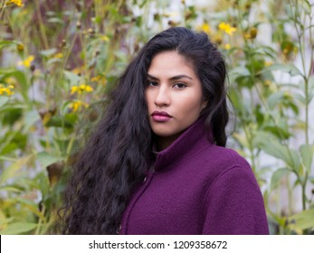 Medium horizontal portrait of sultry hispanic young woman with long flowing curly dark hair wearing purple sweater in front of soft focus Fall flowers