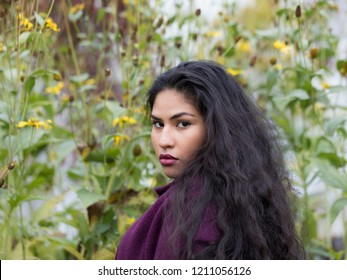 Medium horizontal portrait of sultry hispanic young woman with long flowing curly dark hair draped on purple sweater in front of wall of yellow flowers in soft focus