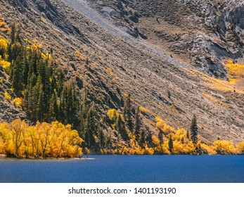 Medium shot of a group of people camping and fishing under the yellow trees on the shore of Convict Lake in California. Relaxing autumn day in the Sierra Nevada mountains, close to Highway 395.