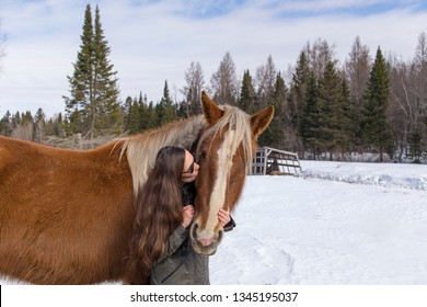 Medium shot of long-haired brunette young woman in warm clothes and sunglasses kissing sturdy tall rust coloured horse against winter countryside landscape