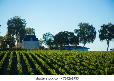 The Medoc district of Bordeaux famous for wine france