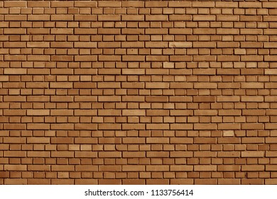 Meerkat colored brick wall background