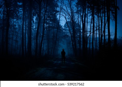 The meeting with an alien civilization on the forest pathway - blurred alien figure with glowing eyes.
