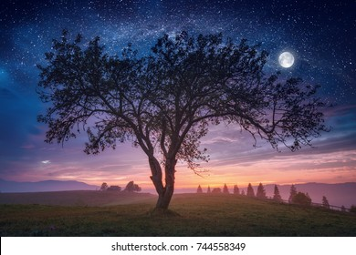 The meeting of day and night in a foggy valley with big tree on a meadow and full moon in a starry sky. Fantastic unreal landscape.