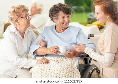 Meeting of happy and smiling senior women and caregiver in the sanatorium
