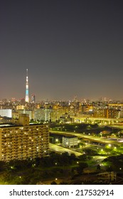Megalopolis and the Tokyo skytree at night