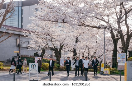 Meguro, Tokyo / Japan - March 26 2018: Graduate Students, Friends, Family at Graduation Ceremony Commencement day of Tokyo Institute of Technology Ookayama Campus with full bloom cherry blossom Sakura