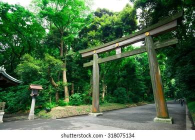 Meiji-jingu park gate in Harajuku, Tokyo, Japan.