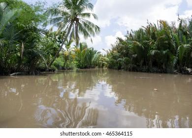 Mekong River Delta jungle cruise in Vietnam