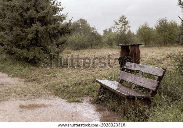melancholic-landscape-after-rain-park-60