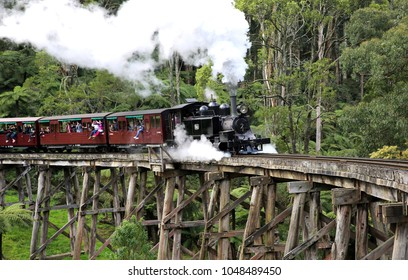 MELBOURNE, AUSTRALIA - 24 AUGUST 2015: The Puffing Billy tourist steam train crosses the Belgrave trestle bridge, carrying tourist on a day trip to Emerald Lake.