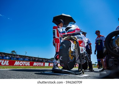 MELBOURNE, AUSTRALIA - FEBRUARY 26:  On the grid for race 2 of the World SuperSport Championships during the 2017 MOTUL FIM World Superbike Championship, Australia on February 26 2017.