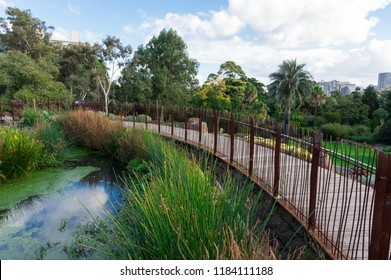 Melbourne, Australia - May 5, 2018: Guilfoyle's Volcano in the Royal Botanic Gardens is planted with water plants and succulents.