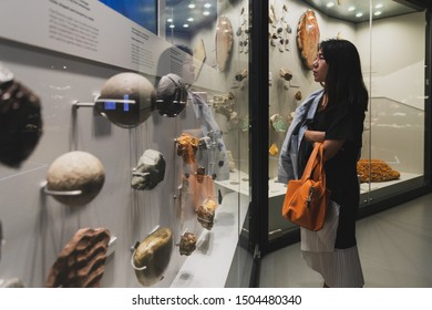 Melbourne, Australia - Nov 9, 2018 : Asian woman traveler look in the exhibition in Melbourne Museum on November 9, 2018.