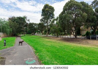 Melbourne, Australia - November 25, 2017: Green Gully Linear Park in Templestowe in the north-eastern suburbs of Melbourne, Australia.