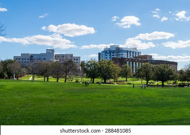 Melbourne, Australia - September 7, 2014: Box Hill Gardens is a park in the multicultural eastern suburb of Box Hill. Box Hill Hospital and Eastern Epworth Hospital are in the distance.