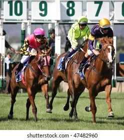 MELBOURNE - FEBRUARY 21: Horses at the start of the De Bortoli Plate, won by On the Scoot at Yarra Glen on February 21, 2010 near Melbourne, Australia.